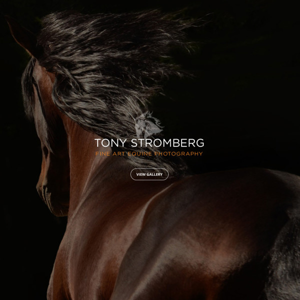 Tony Stromberg Photography